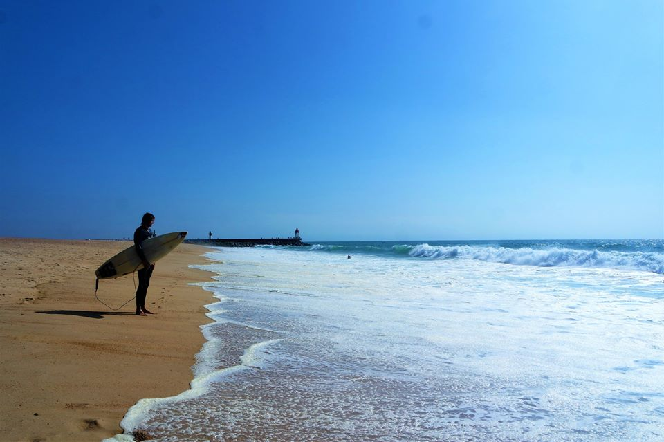 Surf en Las Landas
