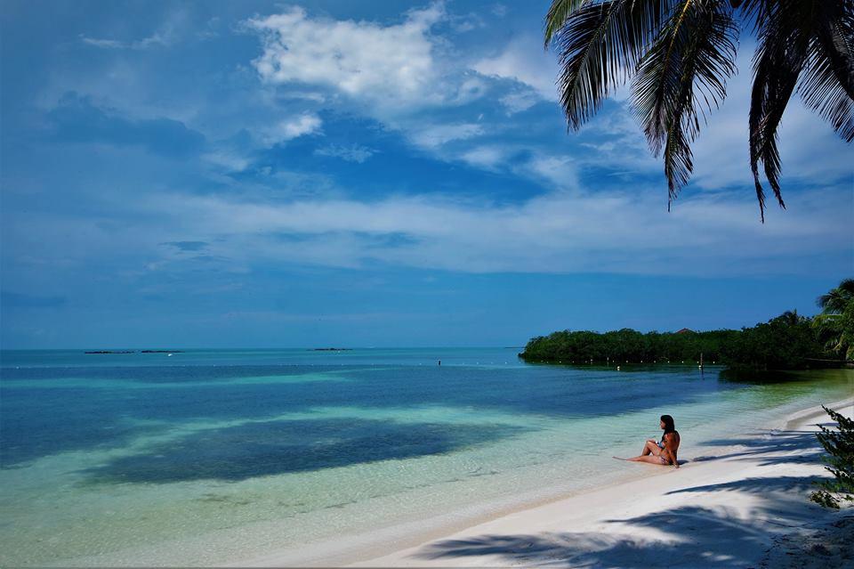 Isla Contoy, qué ver en Riviera Maya