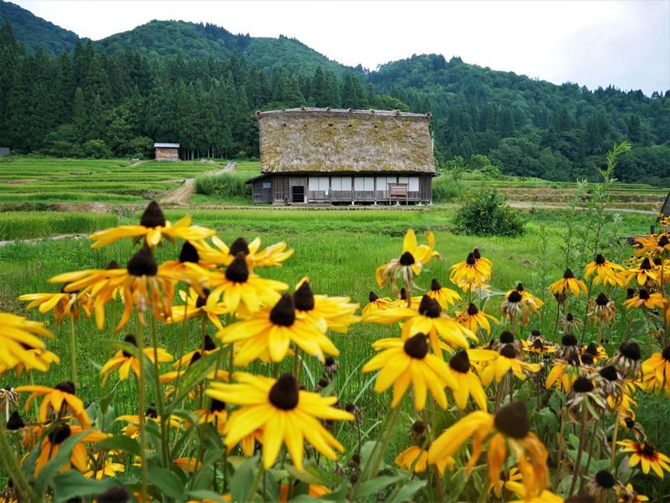 Shirakawa-Go, ruta por los Alpes japoneses