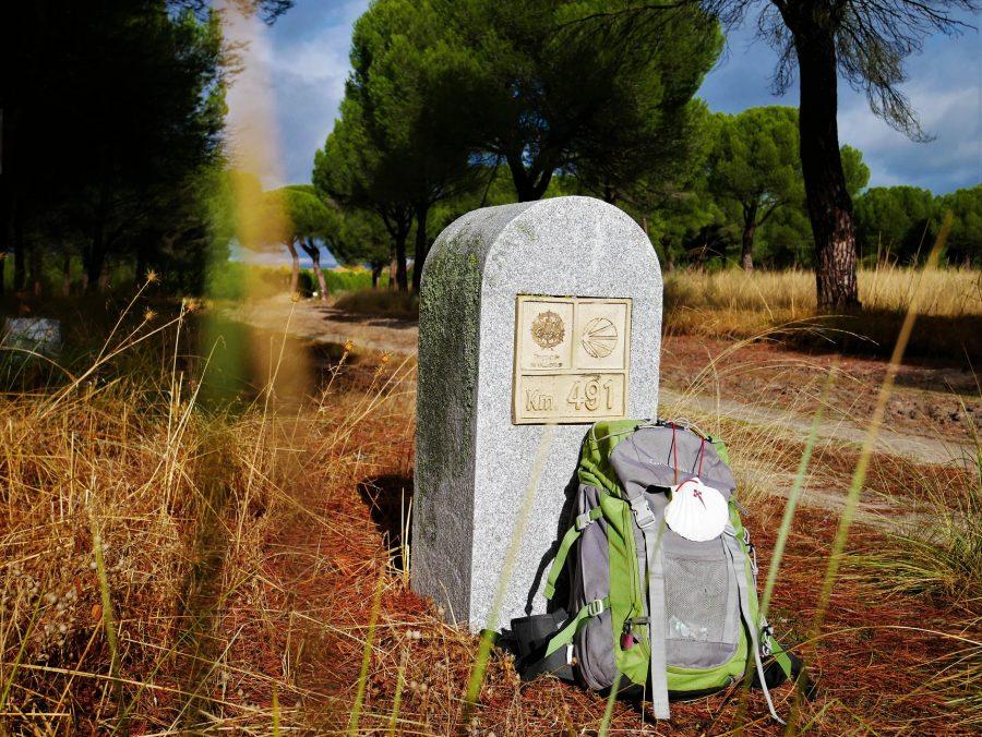 Camino de Madrid a Santiago