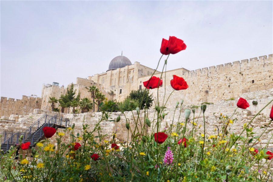 Guía de Jerusalén, qué ver en la Ciudad Santa